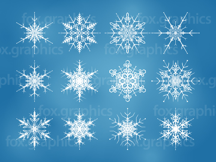 Beautiful vector snowflakes