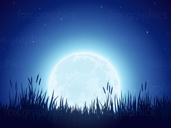 Full moon and stars illustration