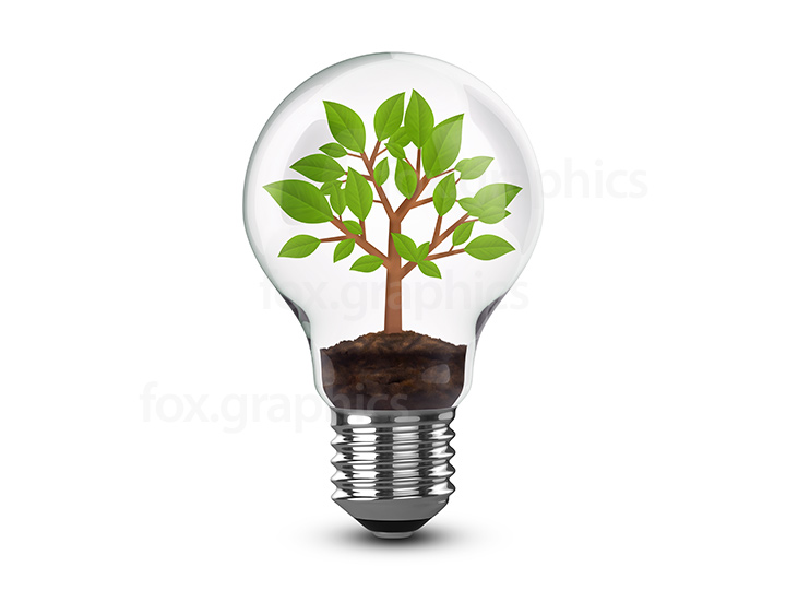 Tree in light bulb PNG