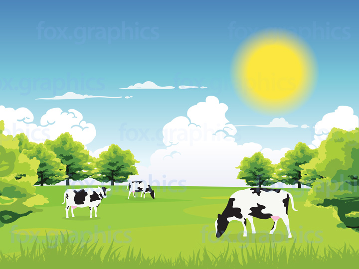 Vector cows background